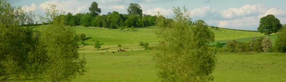 cropped-Village-rectory-field-resized2.jpg